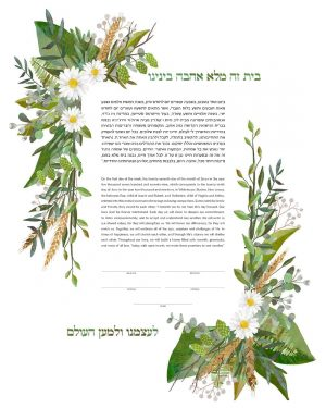 Daisies Hops and Wheat Ketubah