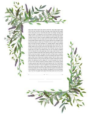 Lavender and olive branches Ketubah